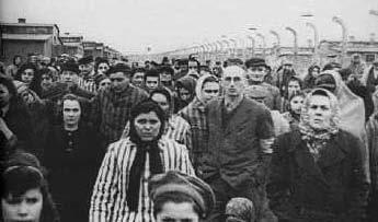 Auschwitz wie es wirklich war