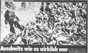 Typhus-Tote von Bergen-Belsen