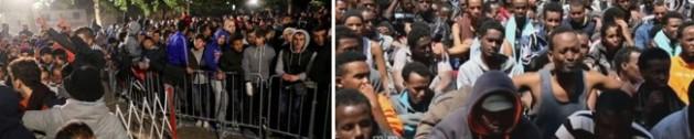 """Etwas 80 Prozent der Schlaraffenland-Tramper, die uns überfluten, über uns herfallen, sind junge Männer - sogenannte Kriegsflüchtlinge. Sie lassen aber nach eigenen Angaben ihre Frauen und Kinder im Kriegsgebiet zurück, kassieren sofort Kinder- und Familiengeld für die """"Zurückgebliebenen"""". Entweder es handelt sich um ekelerregende Verbrecher, die Frauen und Kinder im Stich lassen, anstatt gegen die IS-Mörder zu kämpfen, oder es sind IS- bzw. Boko-Haram-Terroristen, die sich hier heimisch niederlassen, den BRD-Trottel bezahlen lassen und dann die BRD übernehmen, sobald von den BRD-Politikern die """"weiße Flagge gehisst"""" wurde. Dann folgt das Große Schlachten, lieber BRDler. Dann bekommt ihr die Rechnung dafür, dass ihr brav die Systempolitik gewählt habt, dann müsst ihr in Blut bezahlen."""